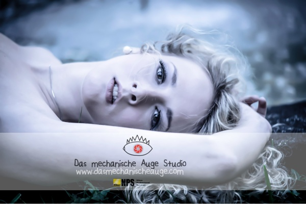 Das mechanische Auge - Fashion shooting 199 €