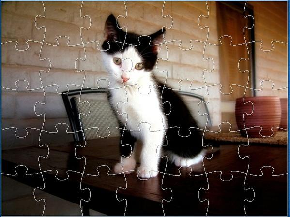 KITTY - E JIGSAW PUZZLE (Level Easy)