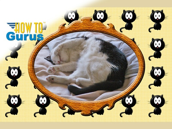 How to Make and Use Patterns in Photoshop Elements 10 9 8 7 Tutorial