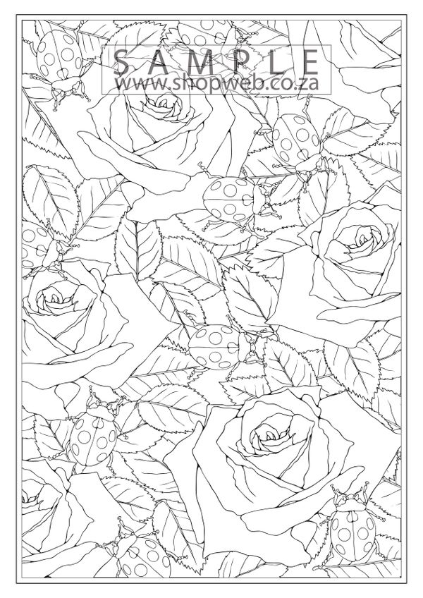Ladybug roses colouring-in page
