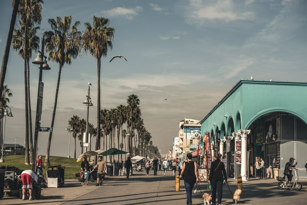 Los Angeles 1 - Venice Beach