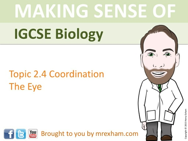 IGCSE Biology - The Eye Presentation