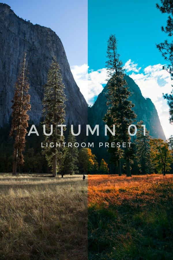 Autumn01 Lightroom preset