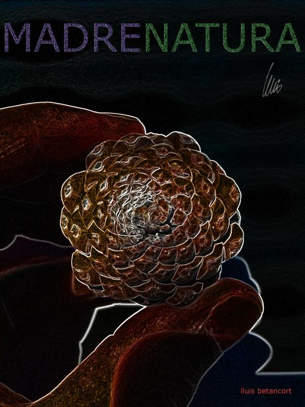 La pinya de la regeneracion de la vida x lluis betancort marenatura