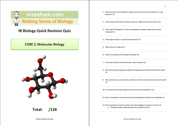 IB Biology Revision Quiz Core 2 - Molecular Biology