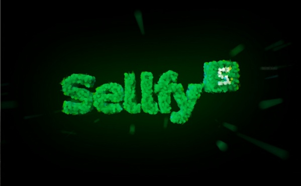 4K 3D SELLFY INTRO TEMPLATE
