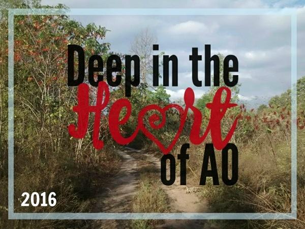 Plenary 4: The Heart of AO, Lynn Bruce