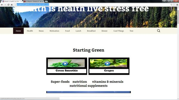 Original wealthishealthlivestressfree  starting page image