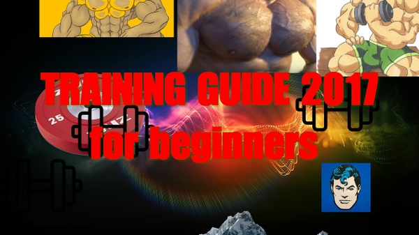 Training guide 2017 for beginners