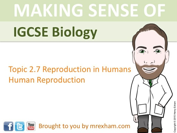 IGCSE Biology - Human Reproduction Presentation