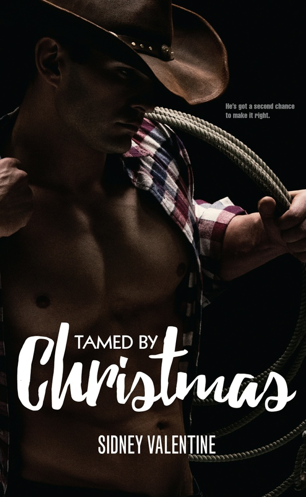 Mobi Tamed by Christmas by Sidney Valentine
