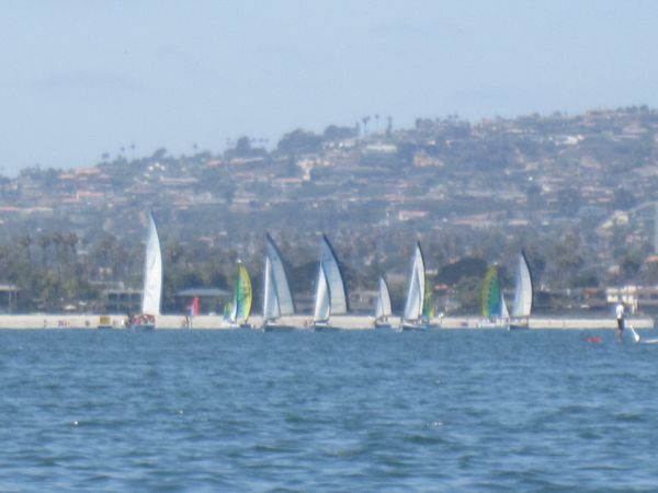 Harbor Sail San Diego