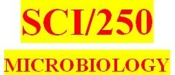 SCI 250 Week 4 Immunity Activity