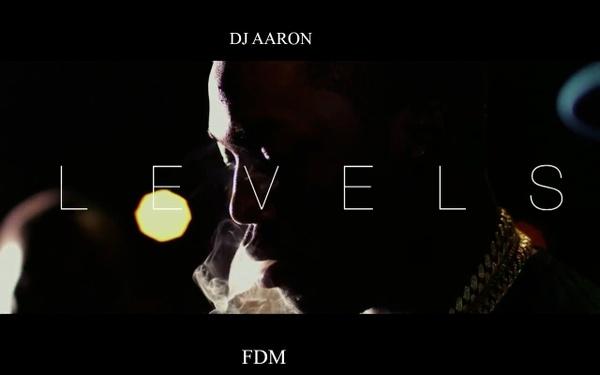 DJAaron- LEVELS FDM