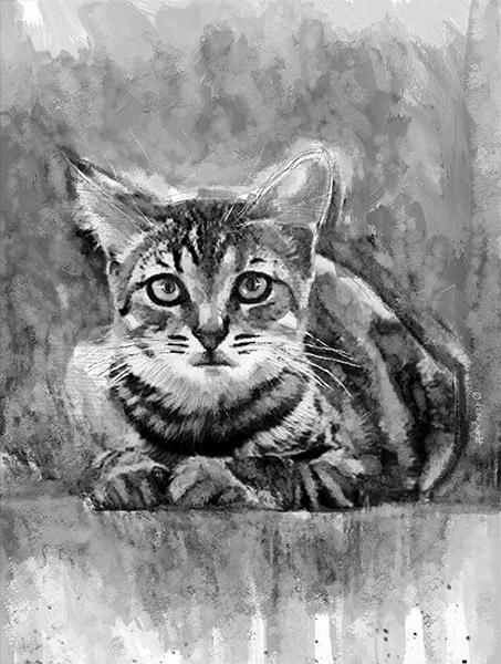CUTE CAT - inkwash portrait - A3 300dpi