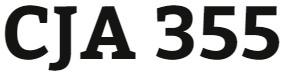 CJA 355 Week 3 Name That Project Presentation