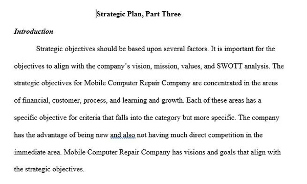 BUS 475 Week 2 Individual Assignment Strategic Plan Part I Conceptualizing a Business