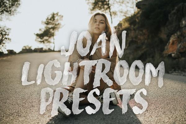 Joan Ligthroom Presets