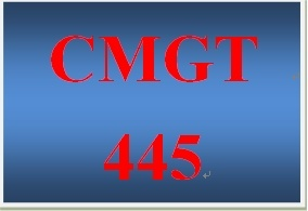 CMGT 445 Week 4 Participation Supporting Activity User Roles