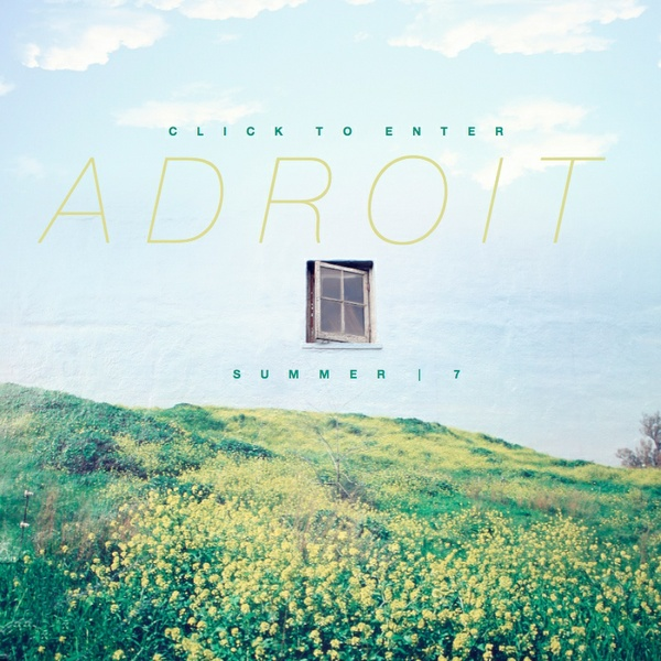 The Adroit Journal - Issue Seven (Summer 2013)