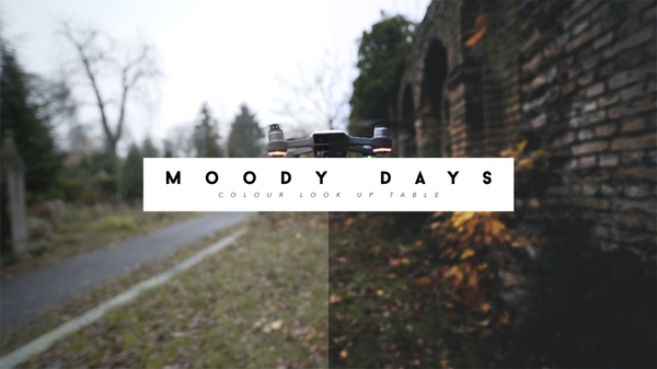 Moody Days LUTs - works with C-LOG (Canon), S-LOG (Sony), V-LOG (Panasonic), D-Log (DJI)