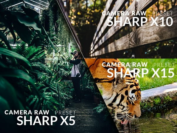 Three levels of sharpening - Camera Raw (photoshop) Presets