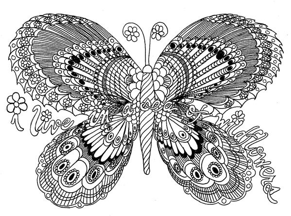 Field of Flowers Butterfly Coloring Page