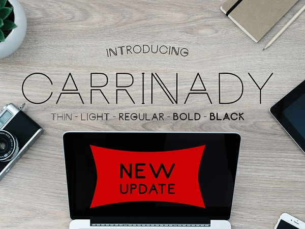 Carrinady Logotype - NEW UPDATE