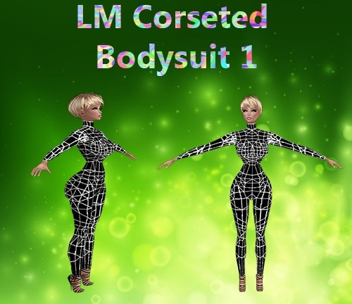 Corseted Bodysuit Mesh Catty Only!!!