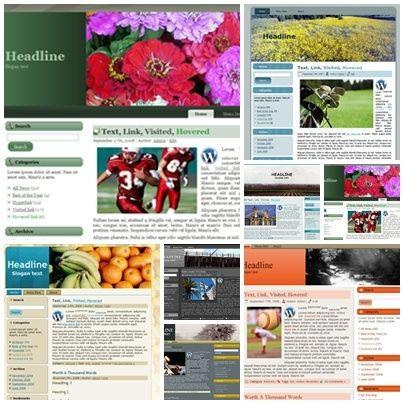 50 Theme WP 6 (PLR)