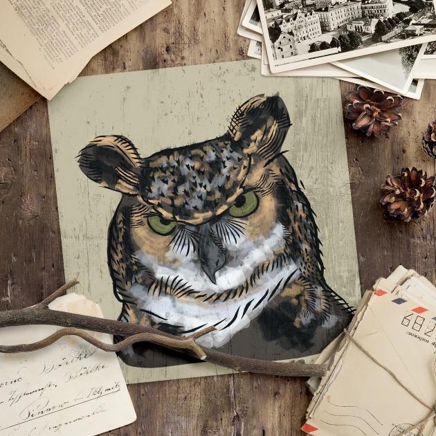 Vector owl hand drawing illustration handdraw