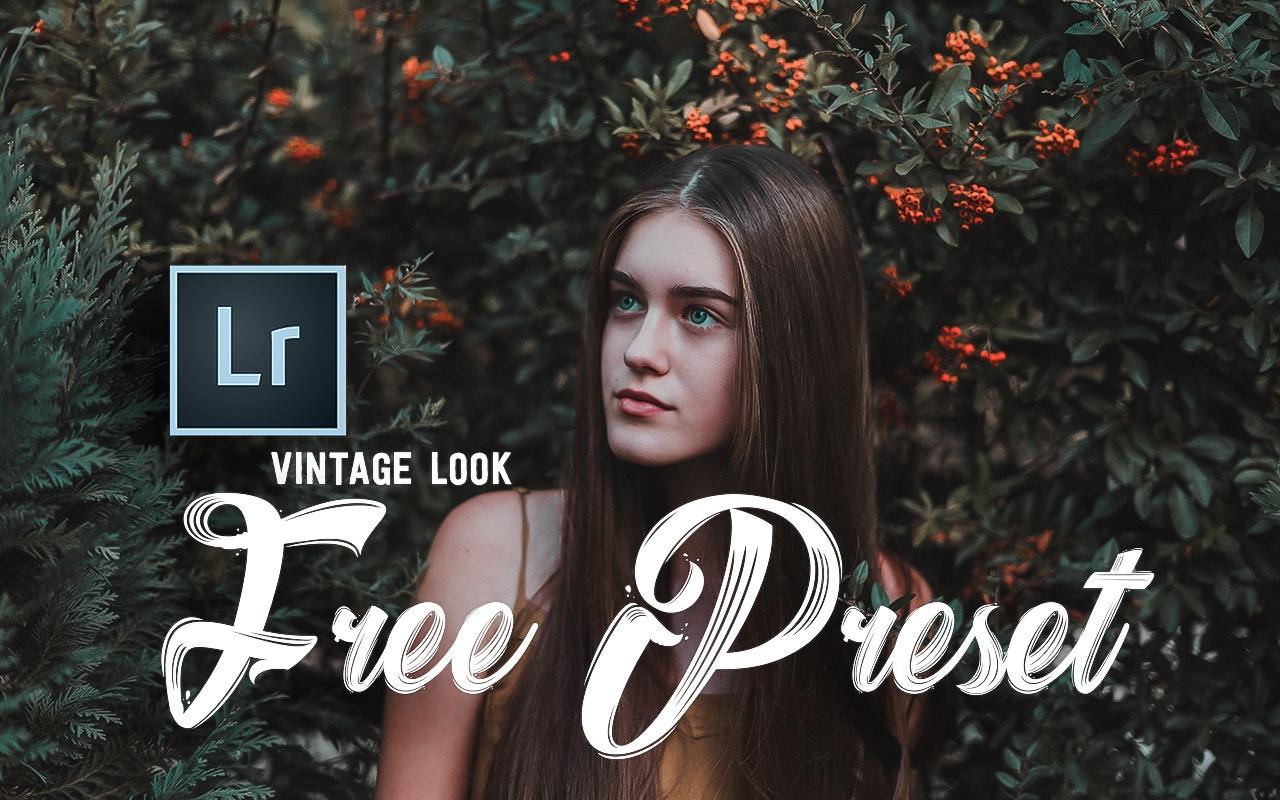 Vintage Look - Free Preset