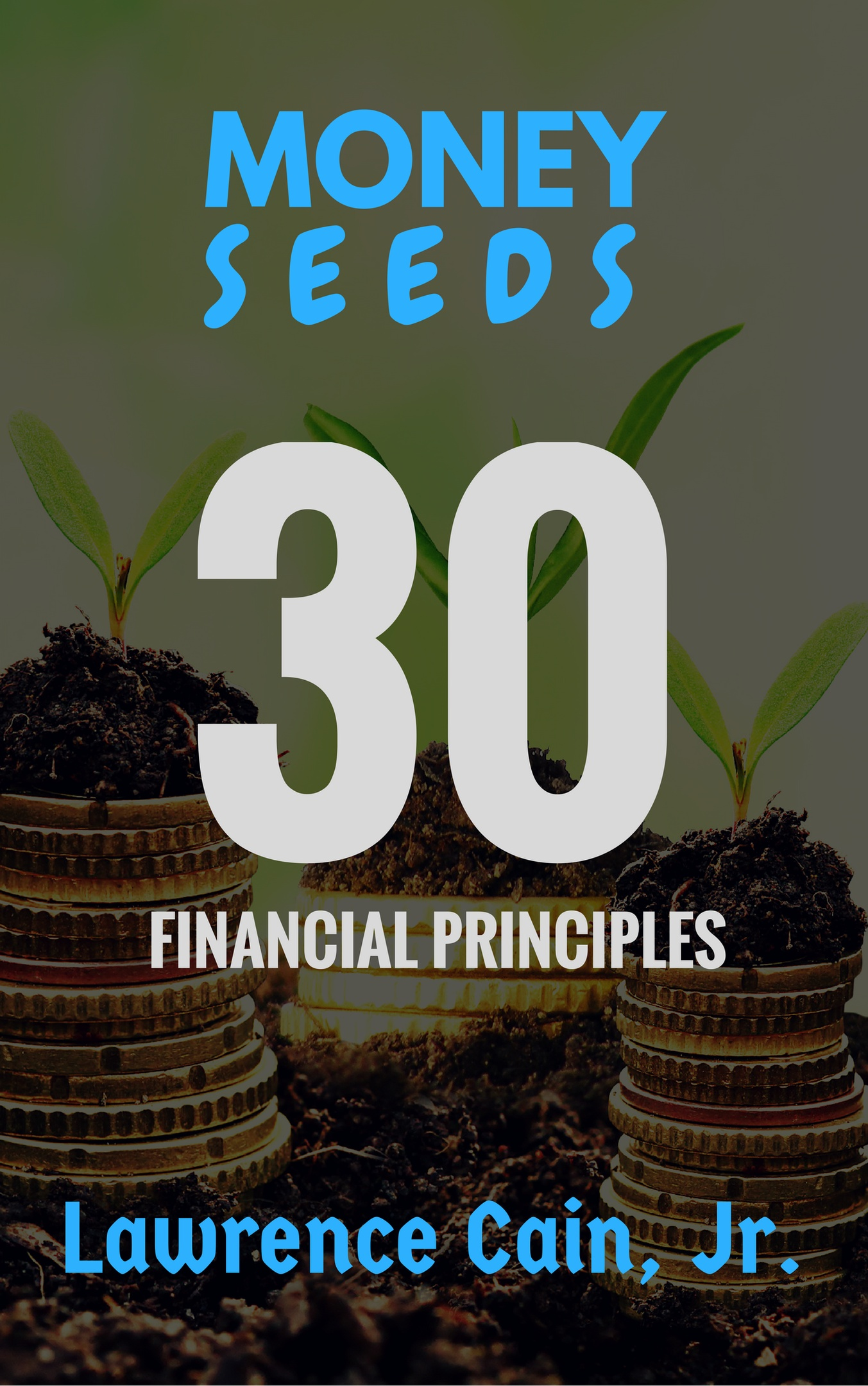 Money Seeds E-Book