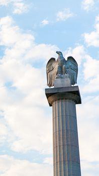Logan Eagle