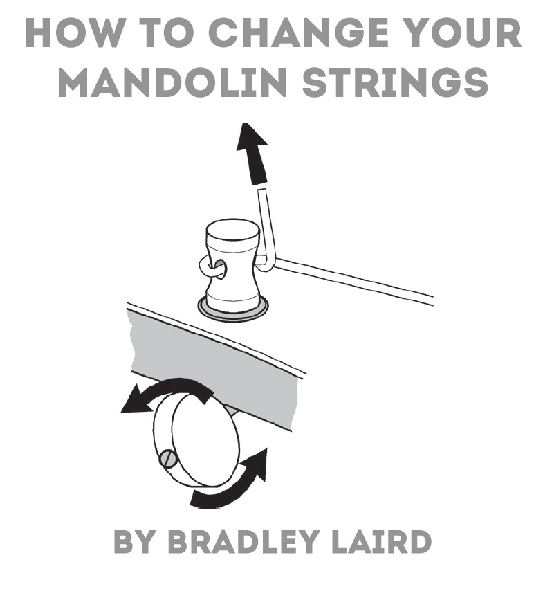 How to Change Mandolin Strings eBook for free