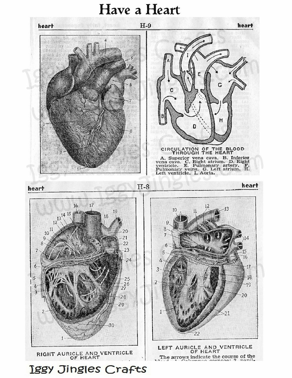 Have a Heart Vintage Image collage sheet in Black and White